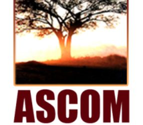 Environmental Impact Assessment for ASCOM Mining Ethiopia Dish Mountain Gold Project